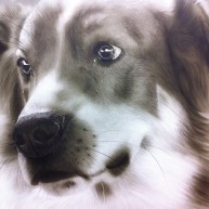 Ilka Hund